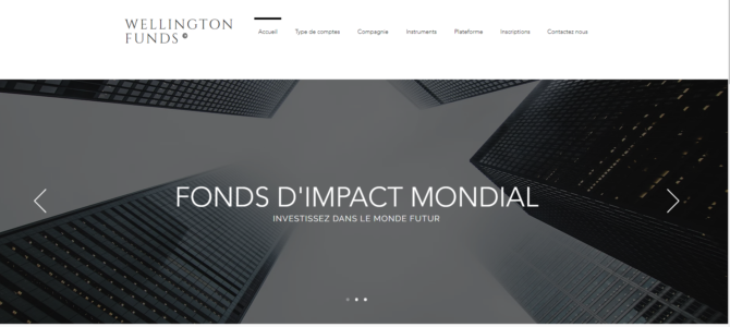 Alerte plateforme | Wellington Funds